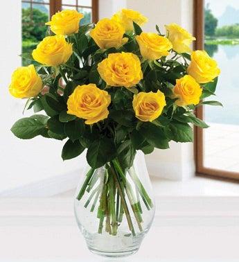Twelve Yellow Roses