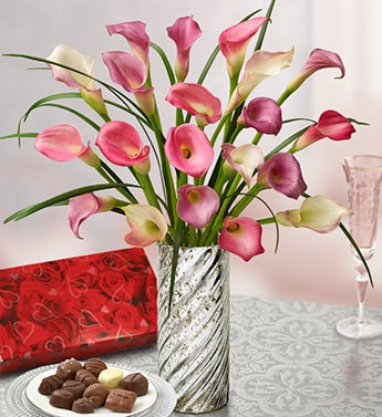 Sophisticated Elegance Calla Lilies, 20 Stems