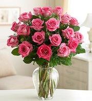 Rose Elegance 24 Premium Pink Roses