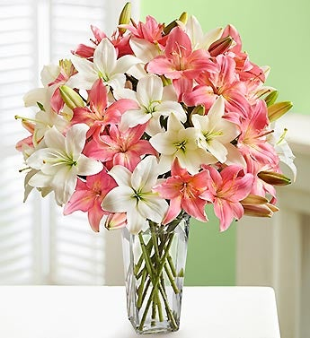 Pink and White Asiatic Lilies