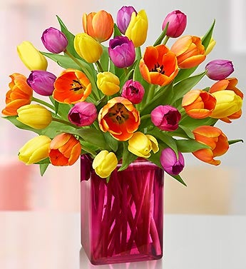 Radiant Tulips for Mom 15 Stems Bouquet