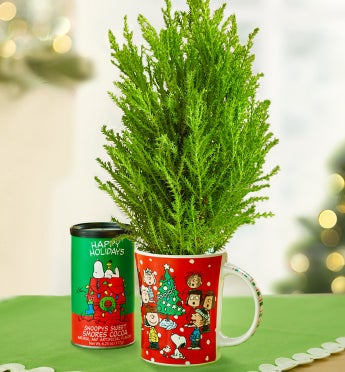 Charlie Brown� Christmas Tree in Mug
