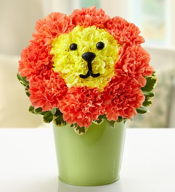 Blooming Lion?