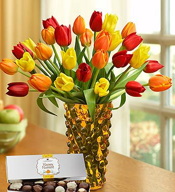 Harvest Tulips with Chocolate, 15-30 Stems