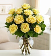 Twelve Yellow Long Stem Roses