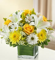 Yellow and White Cube Arrangement