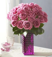 Passion for Purple Roses, 12-24 Stems + Free Vase