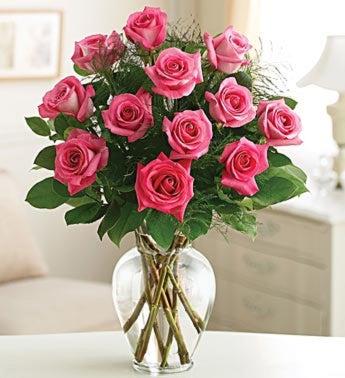 Rose Elegance TM Dozen Pink Roses