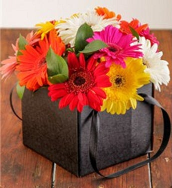 Gorgeous Mini Gerberas in a Box