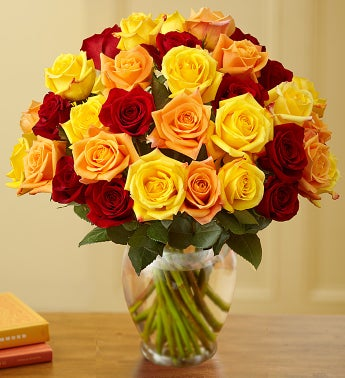 Autumn Roses, 36 Stems