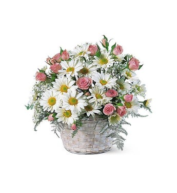Basket of White Daisies and Little Pink Roses