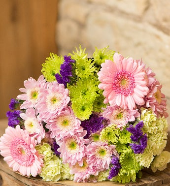 Lilac Delight