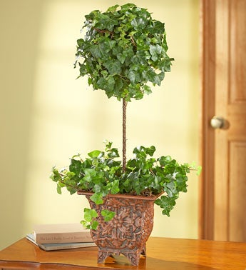 Ivy Topiary in Embossed Metal Pot