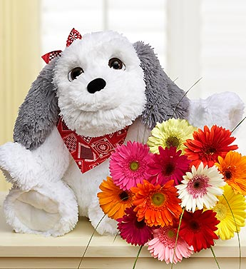 Big Doggie for Baby with Daisies