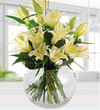 White Lilies Sympathy Arrangement