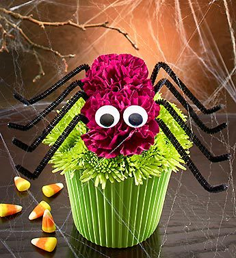 Cupcake in Bloom� - Spider