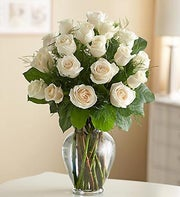 Rose Elegance? White Roses