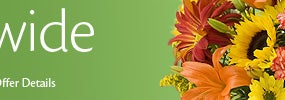 Save $10 on Flowers & Gifts