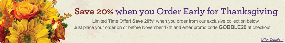 Save 20% on Thanksgiving Collection