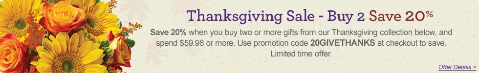 Save 20% on Two or More From Thanksgiving Collection