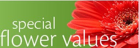 Special Flower Values
