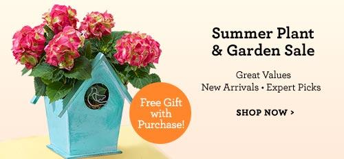 Summer Plant & Garden Sale
