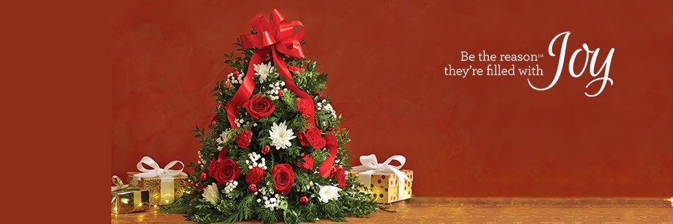 Christmas Flowers & Flowers